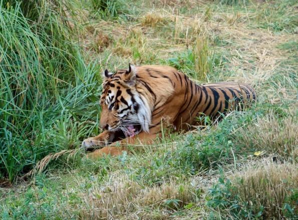Goodbye September, Hello October; The Zoo, Treasure Hunts & FriendsFest