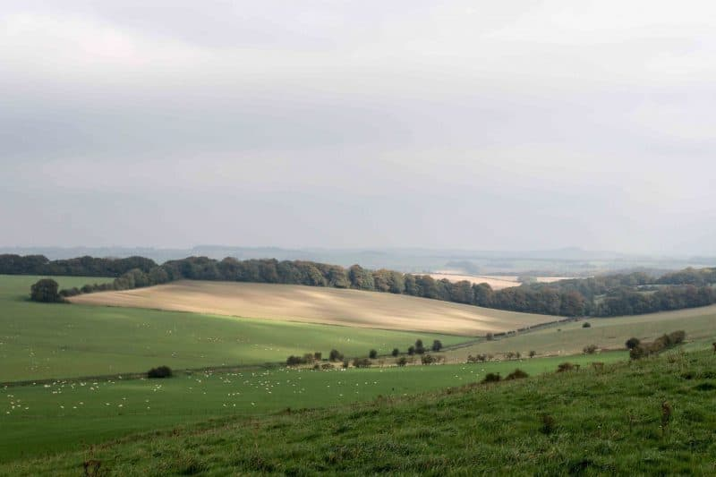 vales of pewsey countryside