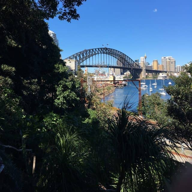 harbour bridge view Wendy's secret garden