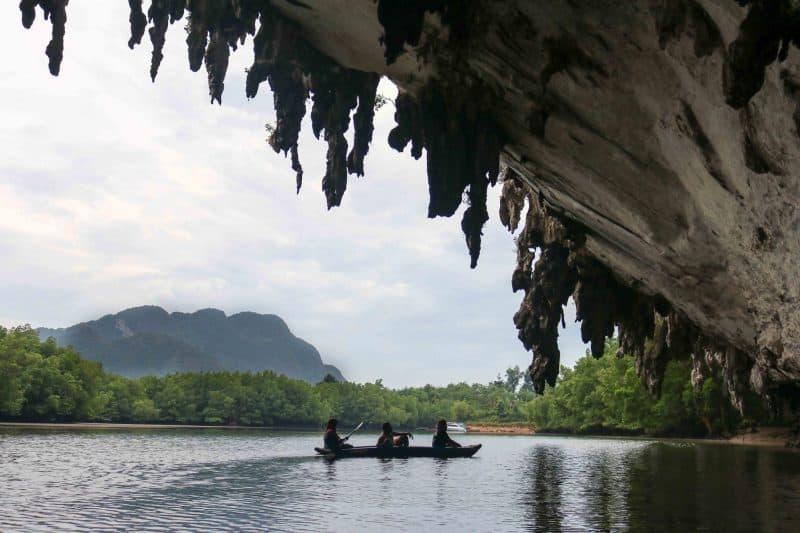 canoe mangroves phuket