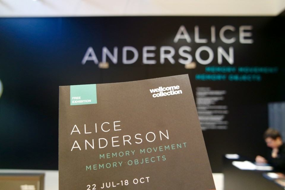 alice anderson wellcome collection