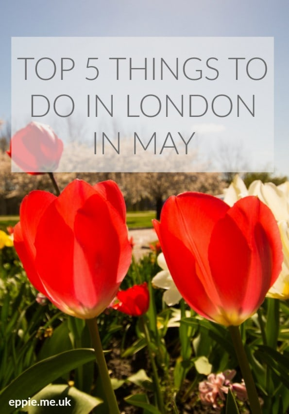Top 5 things to do in may