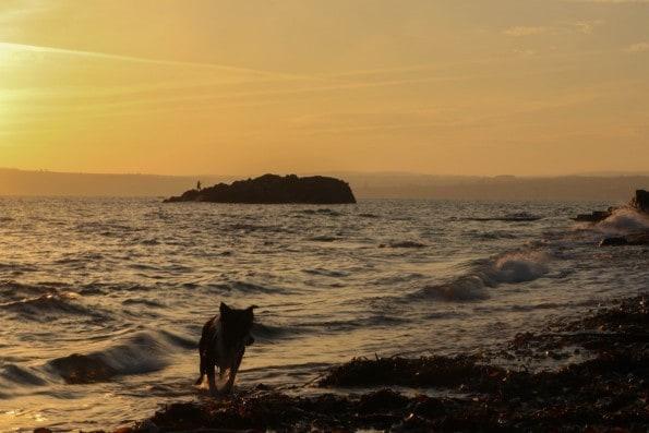 Travel Linkup; A Perfect Cornish Getaway